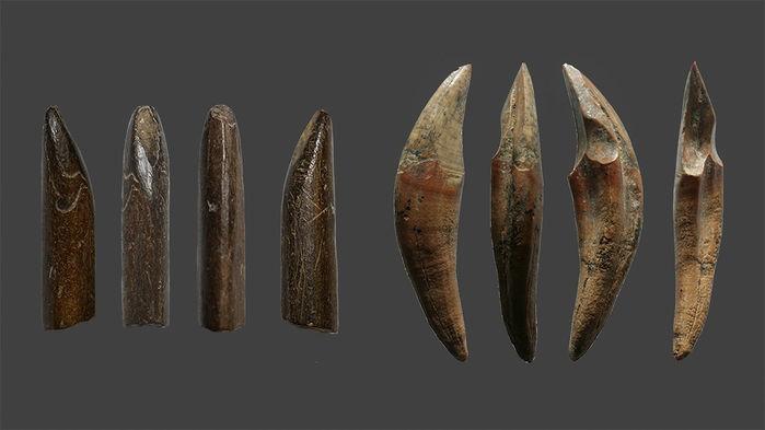 Os primeiros cingaleses transformaram os ossos dos macacos e esquilos que caçavam nesses pontos de projéteis. (Foto: N. AMANO / Nature)