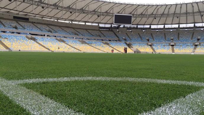Flamengo treina no Maracanã neste sábado (Foto: Reprodução)