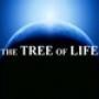Papel de Parede: A Ávore da Vida