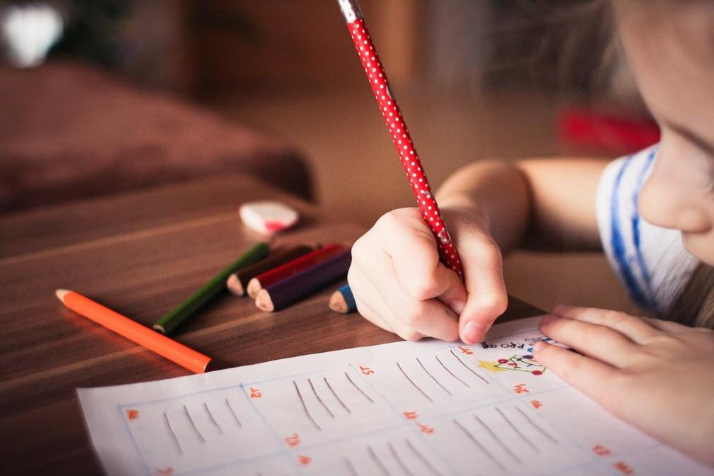 Transtornos de aprendizagem: saiba mais sobre a dislexia e a discalculia — Foto: Pexels/Divulgação