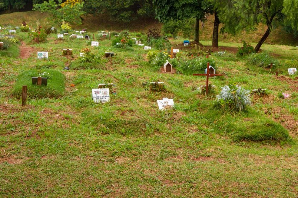 Lápides no cemitério Vila Nova Cachoeirinha, na zona norte de São Paulo (SP), em 25 de fevereiro. — Foto: ROGÉRIO GALASSE/FUTURA PRESS/ESTADÃO CONTEÚDO