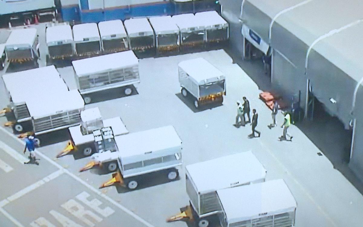 Polícia prende criminosos que roubaram cerca de R$ 2 milhões em celulares no Aeroporto de Brasília