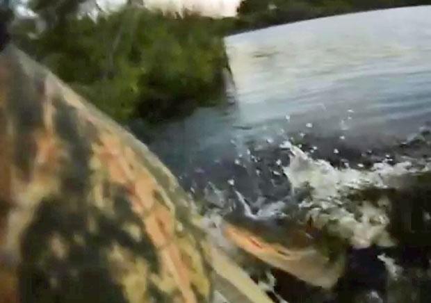 O americano Thomas Swiader filmou o momento em que um aligátor (jacaré americano) o atacou enquanto ele estava pescando em um caiaque em um lago em Casselberry, na Flórida (EUA). (Foto: Reprodução)