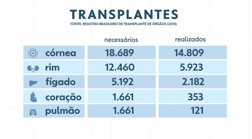 Diferenças entre o número de transplantes necessários e os realizados revelam a falta que fazem os doadores — Foto: Arte/TV Globo