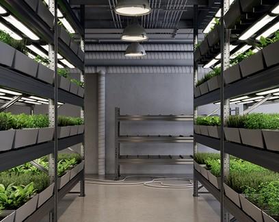 Fazendas urbanas são o futuro, afirma defensor do slow food