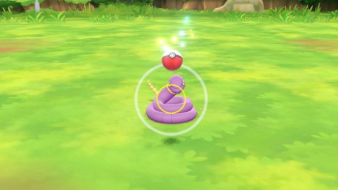 A captura é como em Pokémon GO (Foto: Reprodução/Murilo Tunholi)