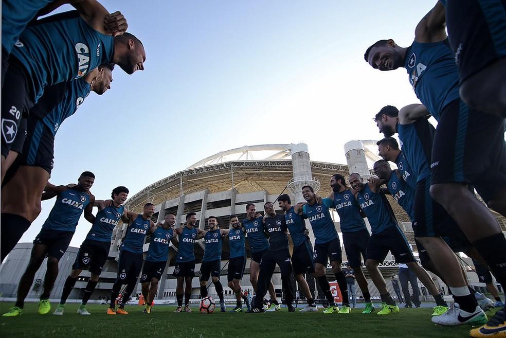 Elenco do Botafogo em 2017 foi reformulado: saíram 14 jogadores (Foto: Vitor Silva/SSPress/Botafogo)