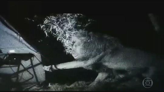 Detetive Virtual: vídeo de homem cercado por leões em barraca é verdadeiro ou falso?