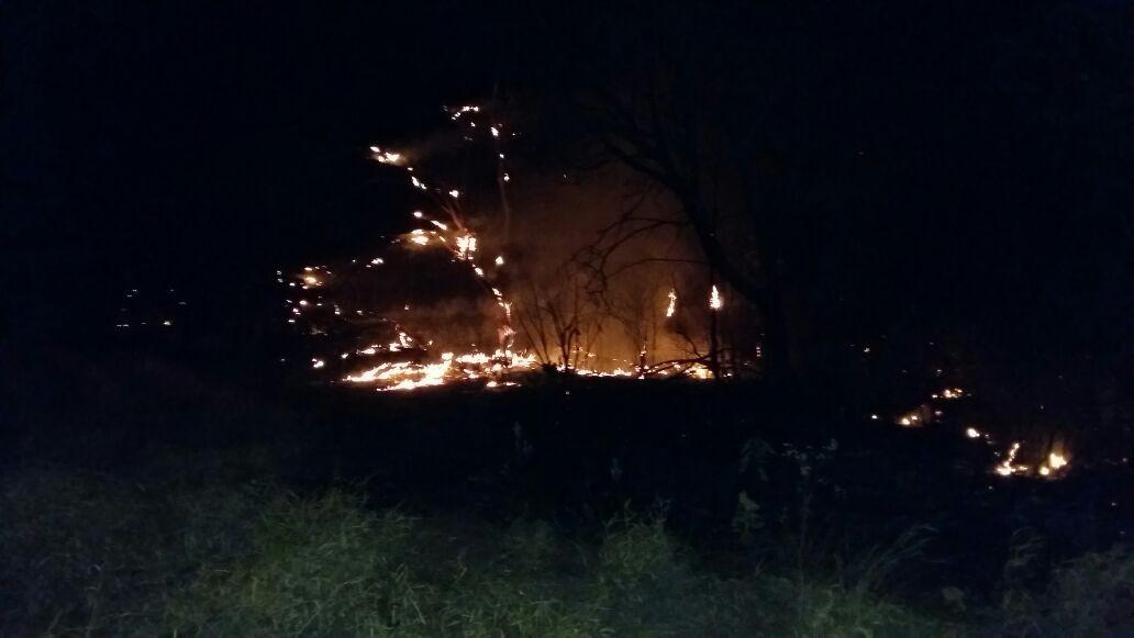 Incêndio atinge área de pastagem e mata na zona rural de Araguari