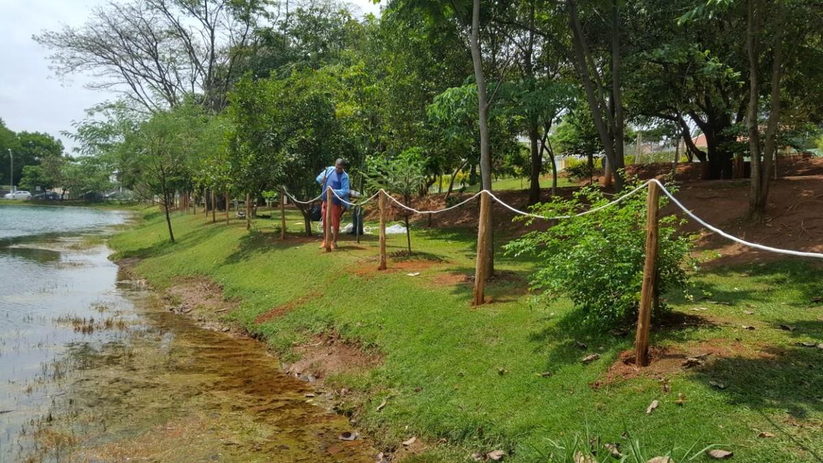 Hortolândia decide cercar lagoa de parque que tem presença de jacarés