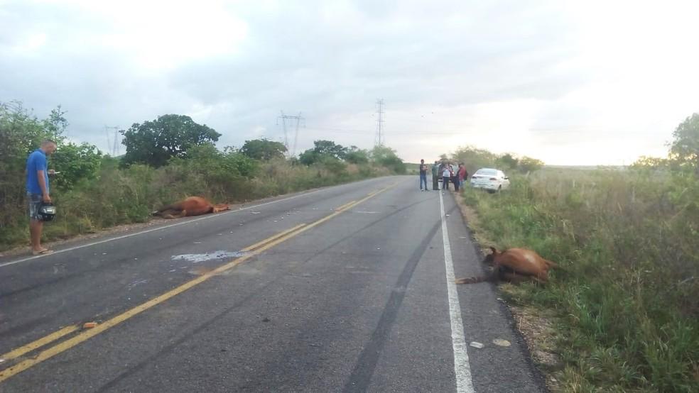 Acidente aconteceu em um trecho da RN-003, entre Santo Antônio e São José do Campestre — Foto: Redes sociais