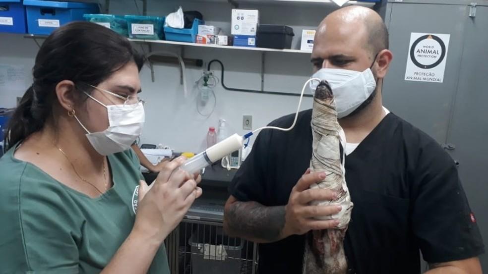 André Nicolai e Silva está no hospital universitário da UFTM, em Cuiabá — Foto: Arquivo pessoal