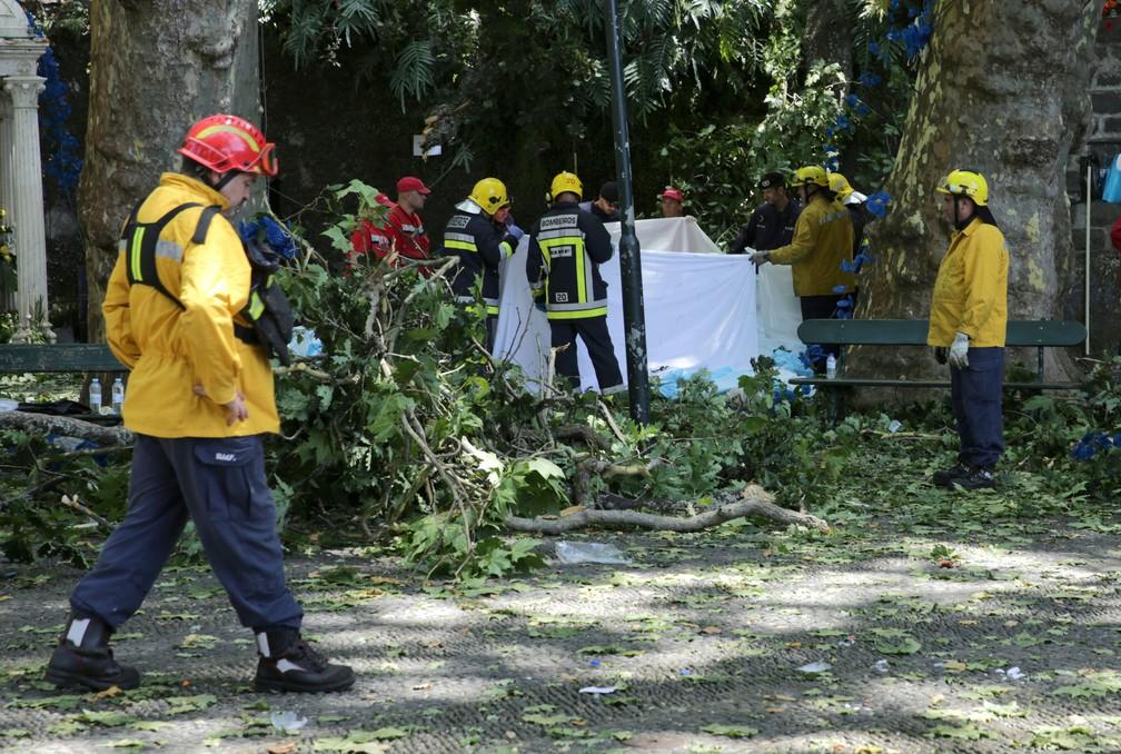 Bombeiros trabalham em resgate de vítimas de queda de árvore no arquipélago da Madeira (Foto: REUTERS/Duarte Sa)