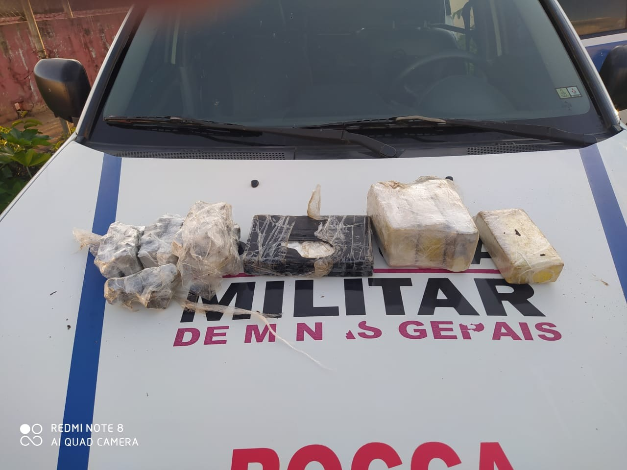 Com ajuda de cadela, PM localiza drogas enterradas às margens do Rio Paranaíba em Patos de Minas