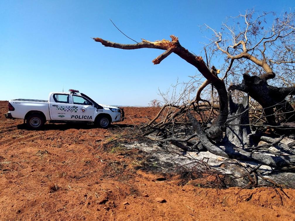 Degradação ambiental foi constatada em sítio em Mirante do Paranapanema — Foto: Polícia Militar Ambiental