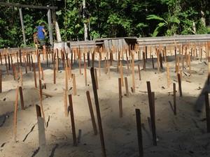Novas covas são criadas para promover incubação de filhotes de tartarugas (Fot Eliazar Bezerra/Ibama)