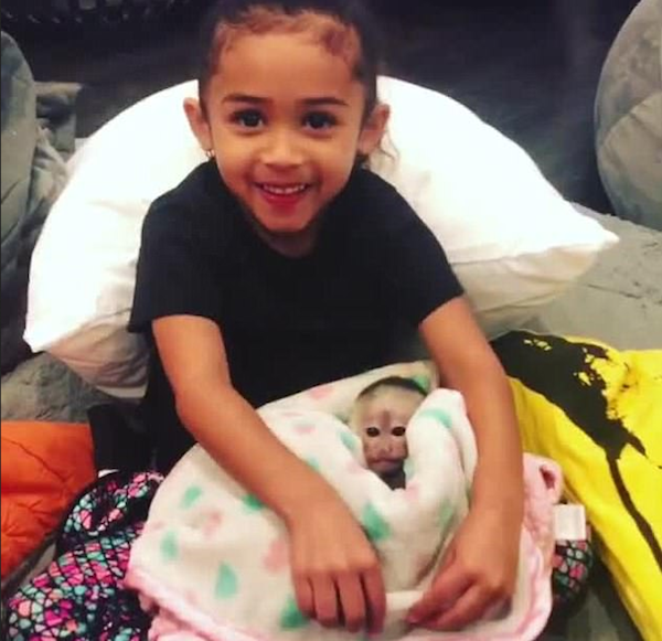 A filha do rapper Chris Brown com o macaco dado de presente por ele (Foto: Instagram)