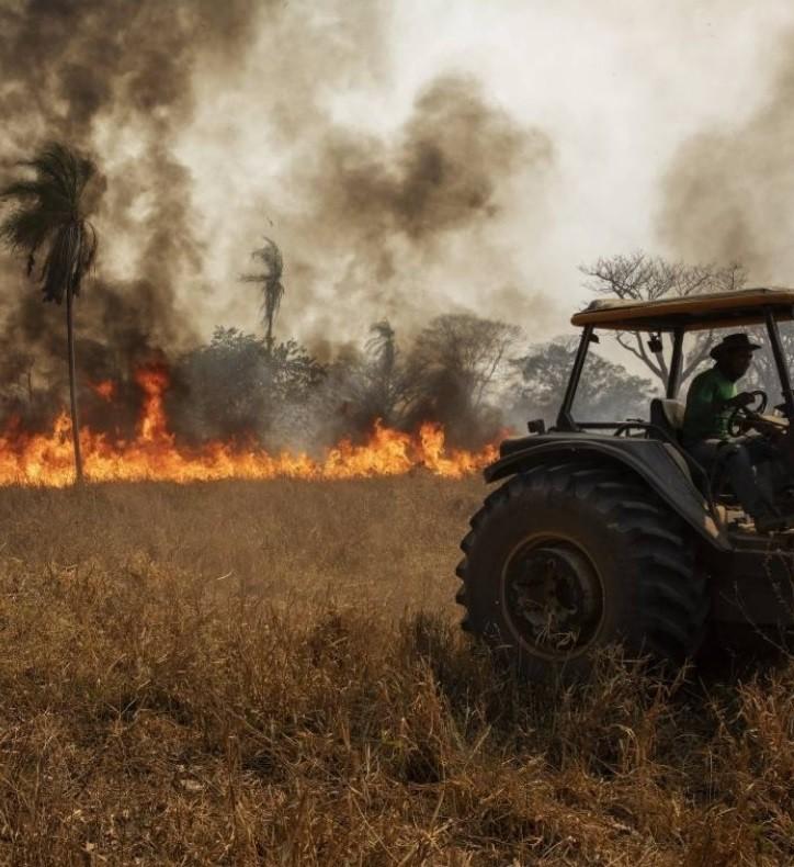 Fogo no Pantanal (Foto: Acrimat/Divulgação)