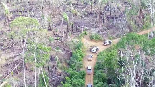 Projetos de conservação de florestas da Amazônia estão parados
