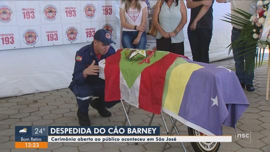 Corpo de cão-bombeiro Barney é cremado após cerimônia aberta ao público na Grande Florianópolis