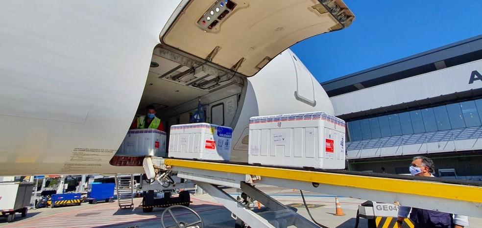 Caixas de doses da vacina AstraZeneca em esteira no aeroporto de Florianópolis nesta segunda-feira (3) — Foto: Núcleo de Comunicação DIVE/SC/Divulgação