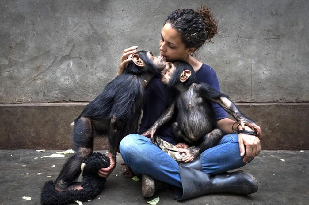 Sequência de imagens traça o perfil de um centro de reabilitação que cuida de chimpanzés que ficaram órfãos — Foto: BRENT STIRTON/WPY