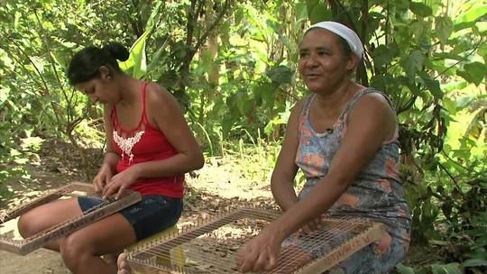 Artesanato ajuda na renda de comunidade quilombola de Santana do Mundaú