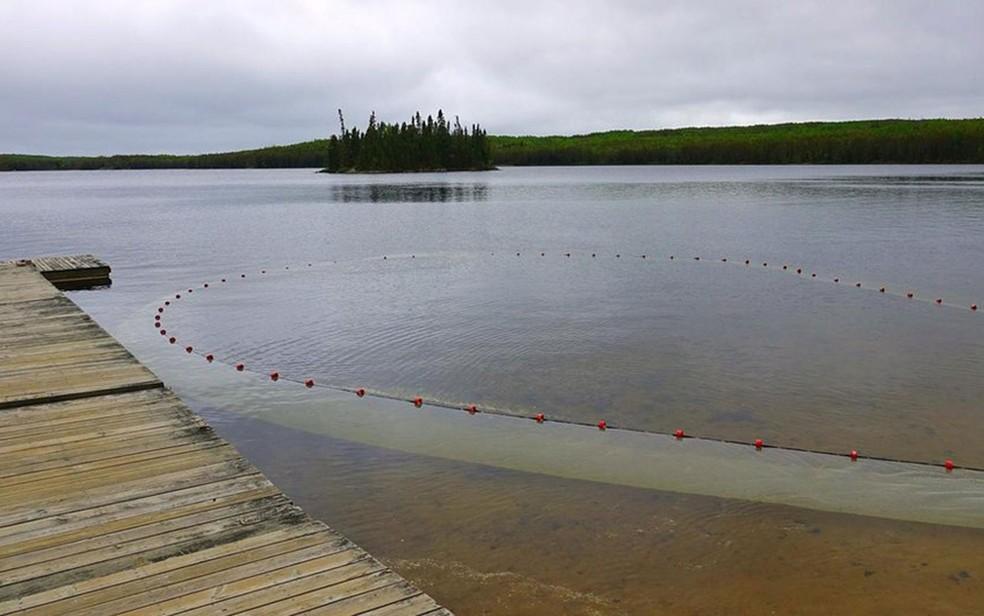 Rede de pesca é usada para recolher amostras de peixe em um lago não-contaminado (Foto: BBC/Lesley Evans Ogden)