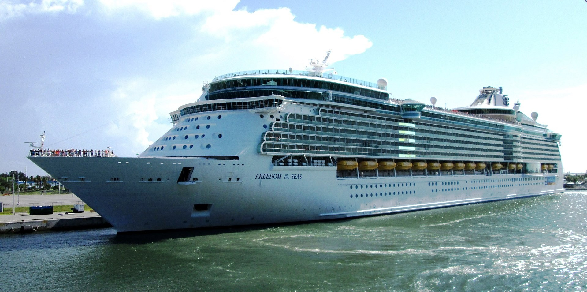 O navio Freeedom of The Seas (Foto: Creative Commons)