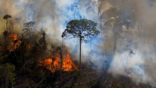 Foto: (CARL DE SOUZA / AFP)