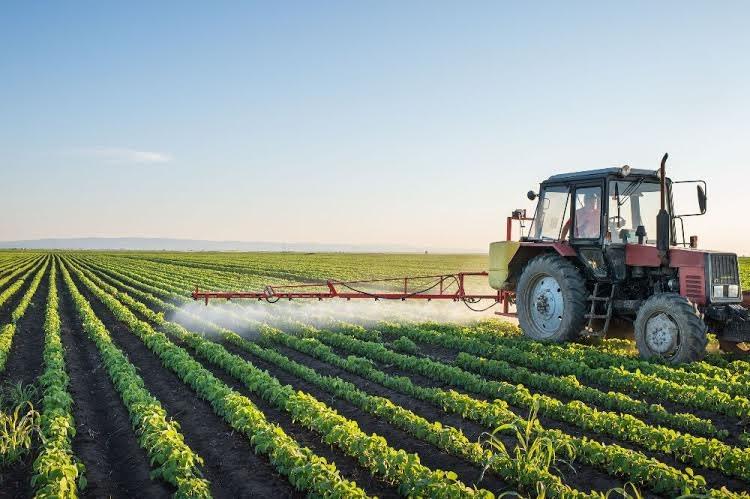 irrigação - agricultura - omnia  (Foto: Divulgação Omnia )