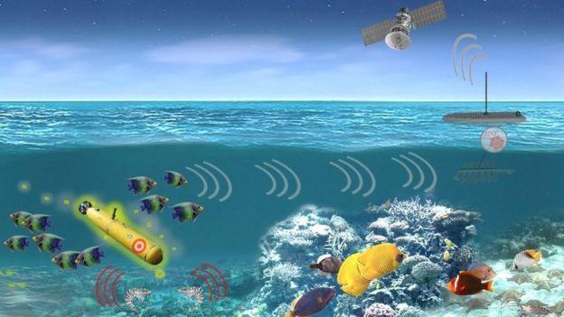 Um esquema de como o sistema de sensores marítimos pode funcionar (Foto: DARPA/PALS/BBC News Brasil)