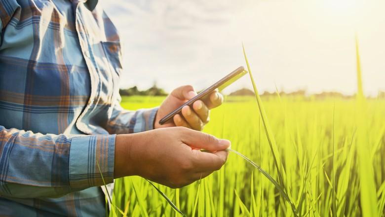 tecnologia-acessível-ao-campo (Foto: Banco de Imagens)