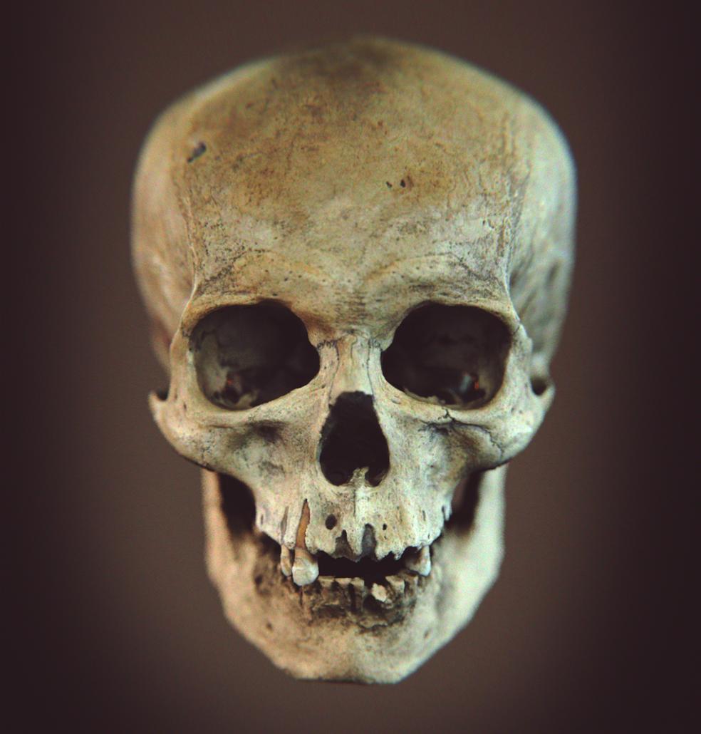 Desenho em 3D foi feito após crânio ser achado  (Foto: Reprodução)