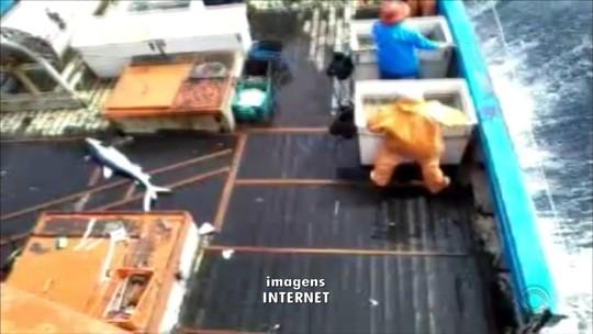 'Impressionou', diz pescador sobre morte de colega mordido por tubarão