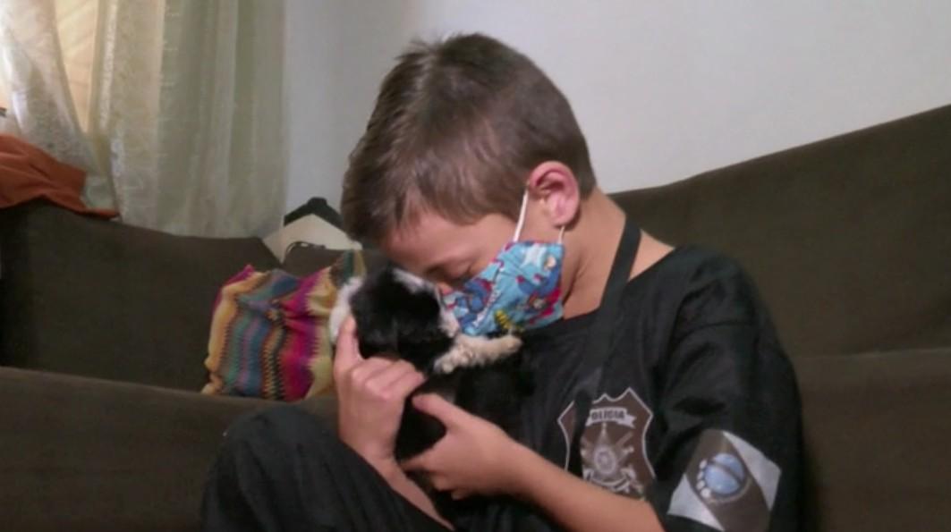 Menino abriga cachorros de rua e é homenageado como 'guardião dos animais', em Cascavel