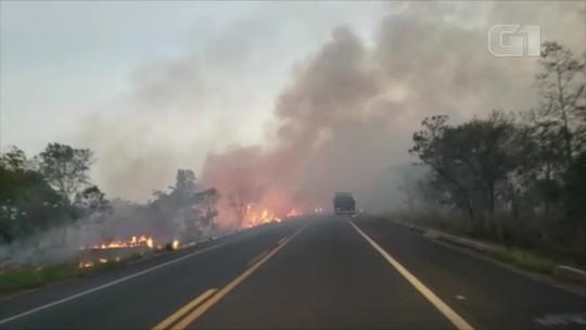 Motorista filma queimada às margens da BR-153: 'a gente sentia o calor do fogo'