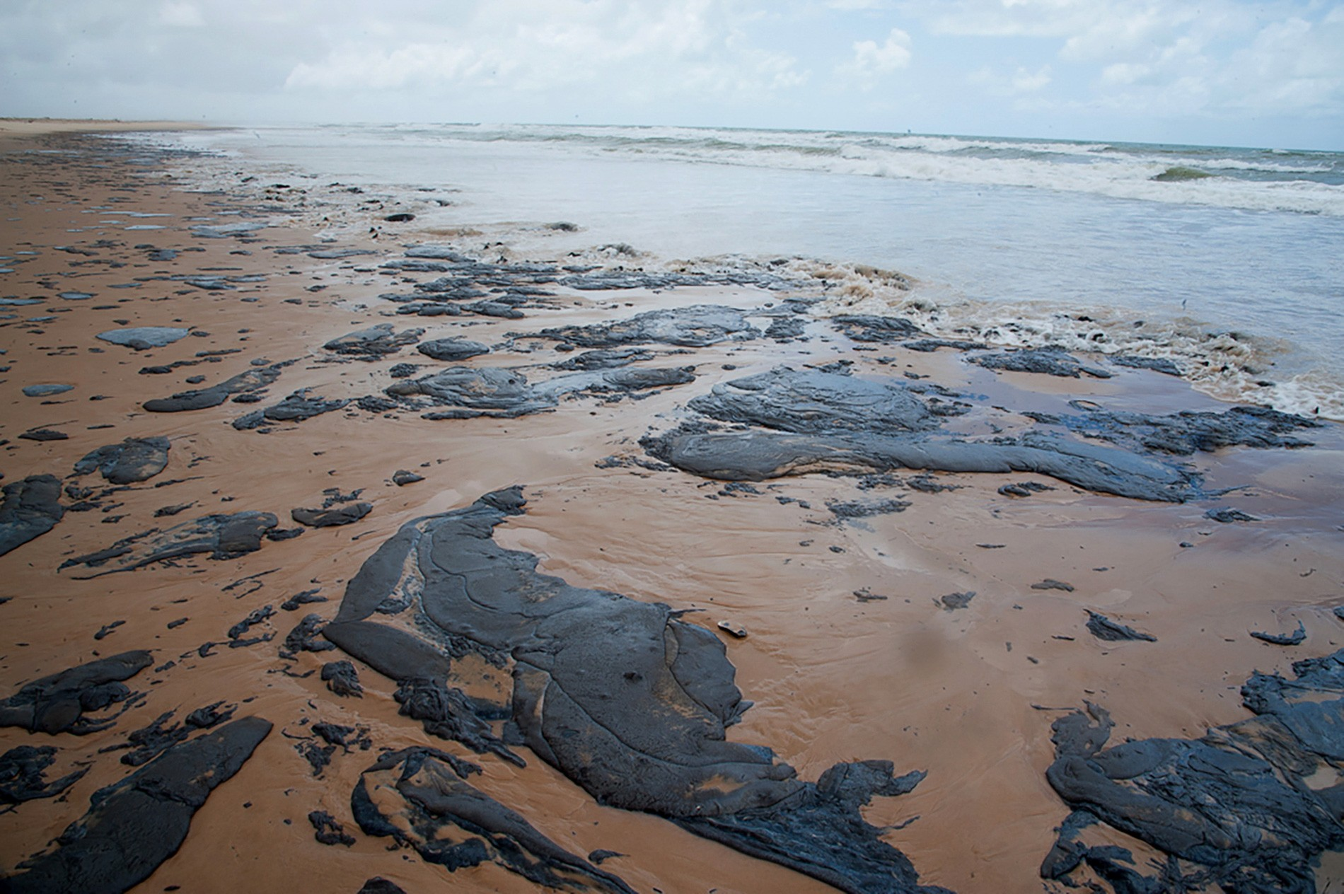 Estado de Sergipe pede que R$ 289 milhões da União sejam bloqueados para custear limpeza do óleo no litoral - Notícias - Plantão Diário