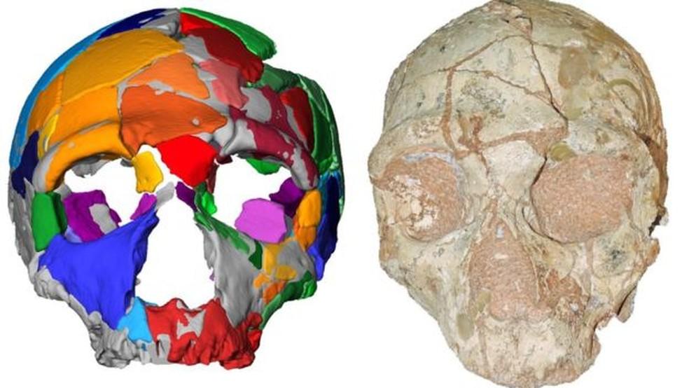 Apidima 2 parece ser de um neandertal e é um crânio mais novo que o moderno crânio humano encontrado junto — Foto: Divulgação