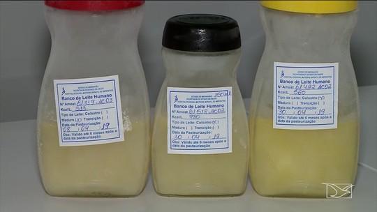 Campanha quer aumentar as doações para o banco de leite materno em Imperatriz