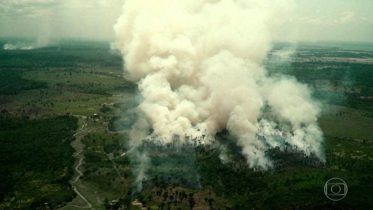 Pantanal, maior planície alagada do planeta, está sendo destruído como nunca se viu antes