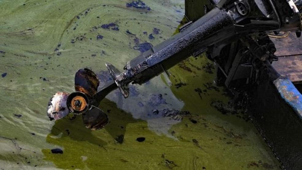 Embarcações também são afetadas pela contaminação. — Foto: Getty Images via BBC