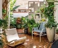Como inserir plantas no décor e promover bem-estar em casa