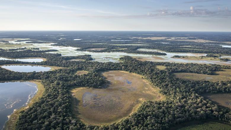 pantanal-preservação-meio-ambiente-coração-floresta (Foto: Divulgação/André Dib-WWF)