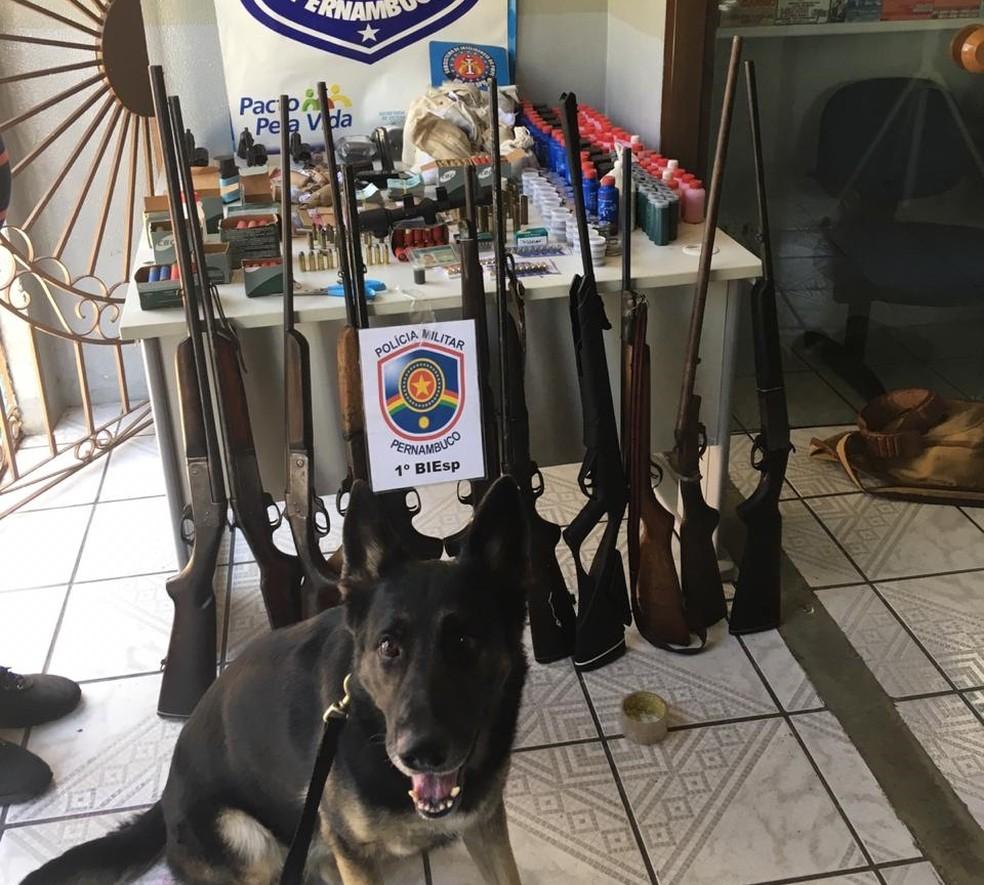 Espingardas, revólveres e munições foram encontrados com o idoso suspeito de comércio ilegal de armas, em Buíque — Foto: PM/Divulgação