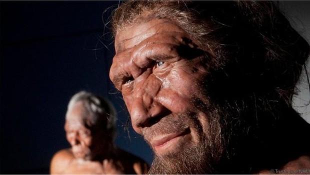 Os seres humanos não-africanos de hoje têm uma pequena proporção de seu DNA oriunda dos neandertais (Foto: NHM/BBC)