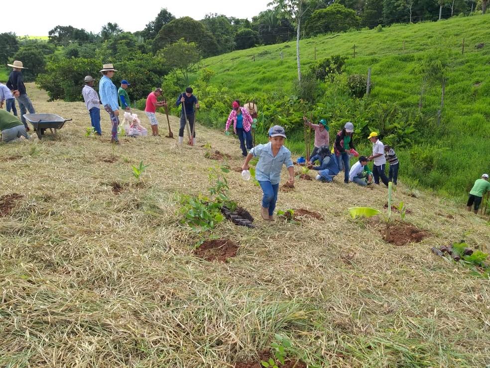 Grupo plantando mudas de árvores em uma área de preservação permanente de Jaru (RO). — Foto: Grupo Água Viva/Divulgação