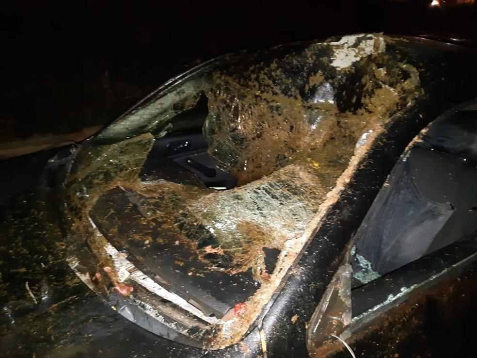 Para-brisa do veículo ficou destruído com o impacto na rodovia de Marília — Foto: Arquivo Pessoal