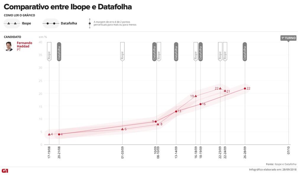 Comparativo Ibope e Datafolha - Fernando Haddad — Foto: Arte/G1
