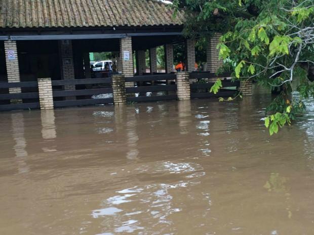 Rio Taquari sobe e Defesa Civil retira 11 famílias ribeirinhas (Foto: Divulgação/ Defesa Civil de Coxim)